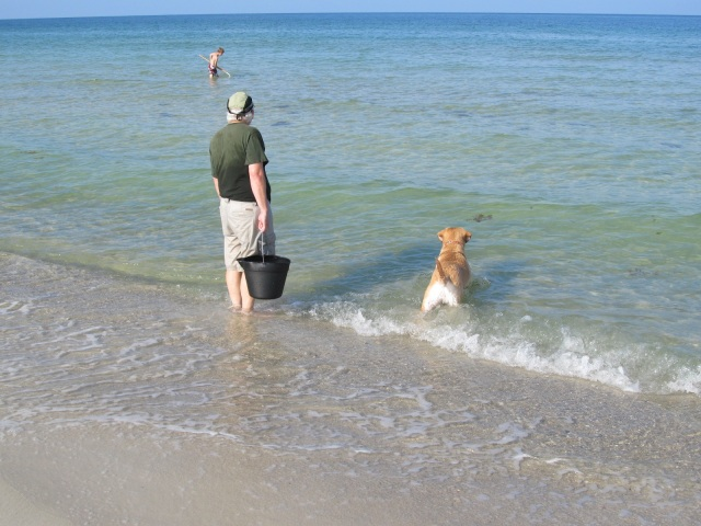 Ely helping Noah and David with crabbing.