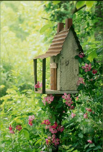 S0685B-Ozark-birdhouse-in-spring